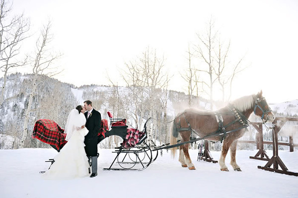 Horse and winter wedding